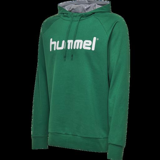 HUMMEL GO COTTON LOGO HOODIE, EVERGREEN, packshot